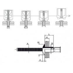 H100232C100 - MONOLOCK TP6.5 L14.6 - IN/IN (QTE 100)